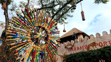 6 Reasons to Visit WDW This Summer