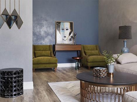 luxury intrior designer living room
