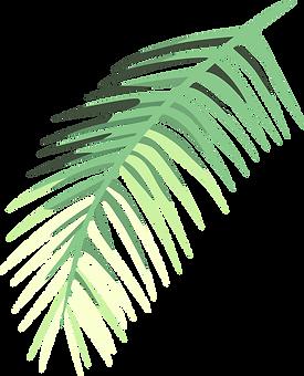 Tropical%20Leaf%20%20%20_edited.png
