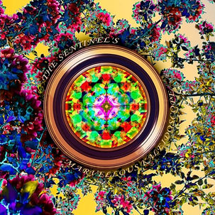The Sentinel's Marvellous Kaleidoscope