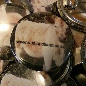 Audiopollination