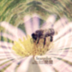 """"""" Sun Door 間 Moon Door 閒"""" by Starpilot"""