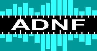 logo adnf.jpg