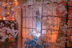 2号店桜.jpg