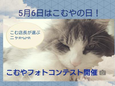 フルタイム貸切無料プレゼント!5/6こむやの日フォトコンテスト開催!
