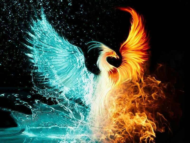 Image of a Phoenix that is half water and half fire