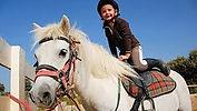 Çakıltaşı Anaokulu Çapa Fatih yaz okulu at binme