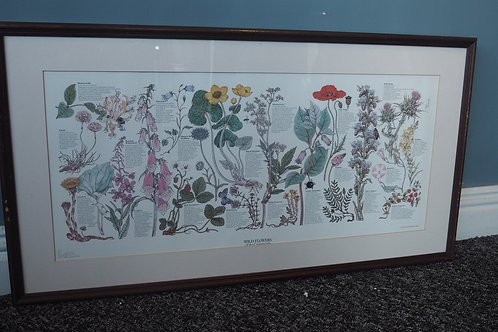 1970s 'Wild Flowers of the Countryside' Poster