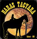 O Haras Tacyara além das práticas equestres, há no local um fantástico projeto musical sertanejo. Ideal para uma conecção profunda com a natureza e sentir a energia do lugar.