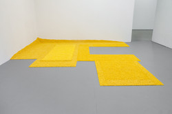 Yellow is Mine (Not my Yellow), solo show, Chicago Artist Coalition, 2018, Chicago, IL