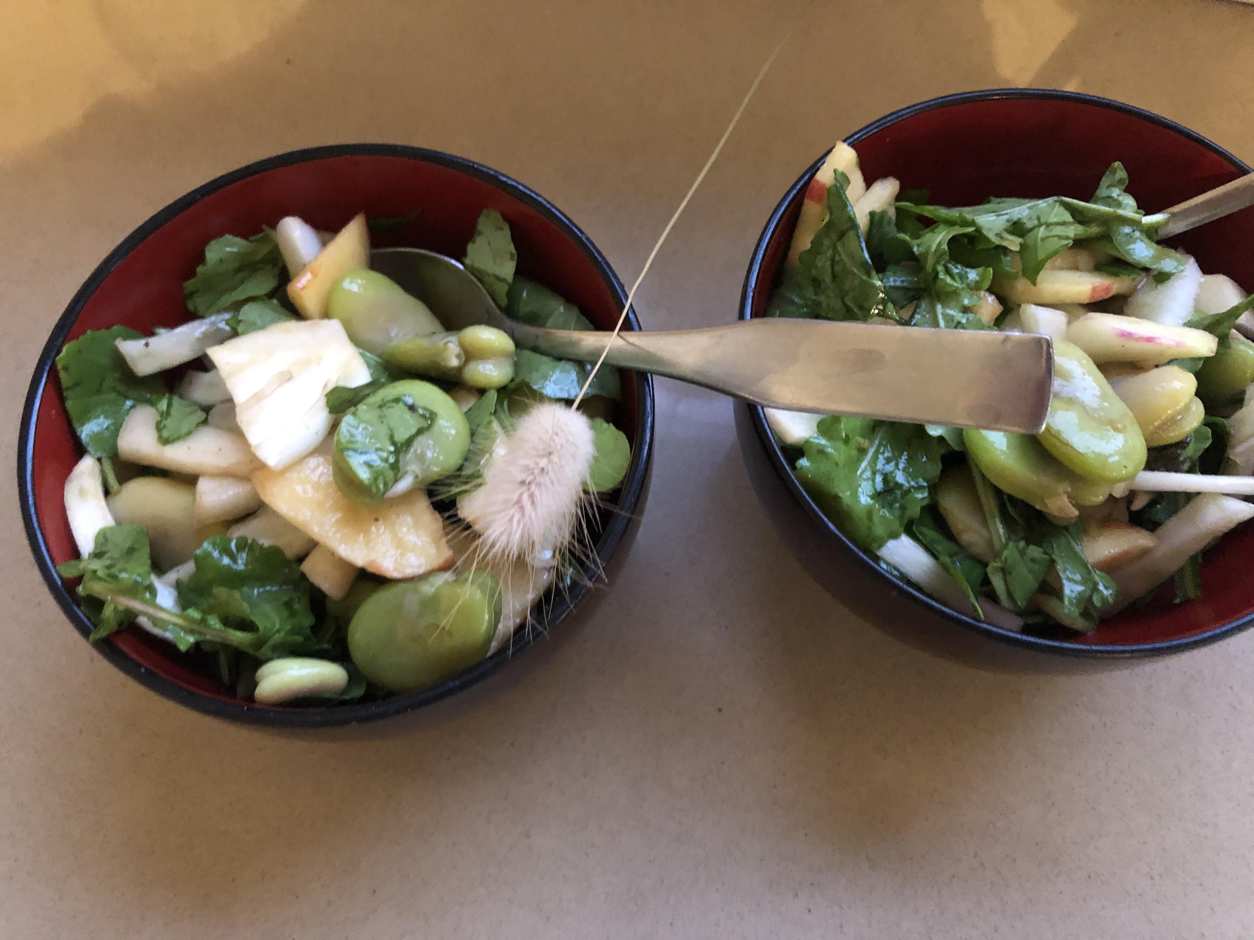 spring salad, covid-19, Tel Aviv, April 1