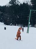 T-rex skiing.jpg