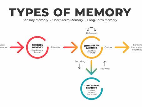 Making Memories Within The Brain