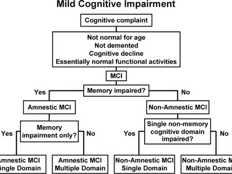 What is Mild Cognitive Impairment?