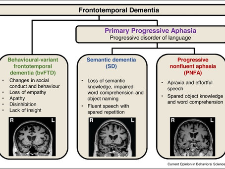 Frontotemporal Dementia...What Is It?