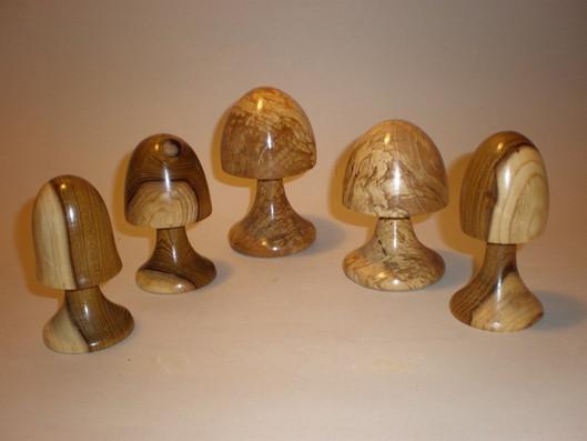 Selection of mushrooms Woods: Beech and Laburnum Price: £8 each