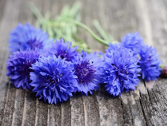 purple flowers on wood.png