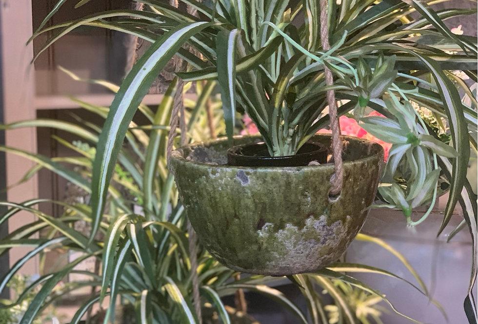 Hanging Pot Verde