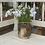 Thumbnail: Tall Leaf Vase / Candle Holder