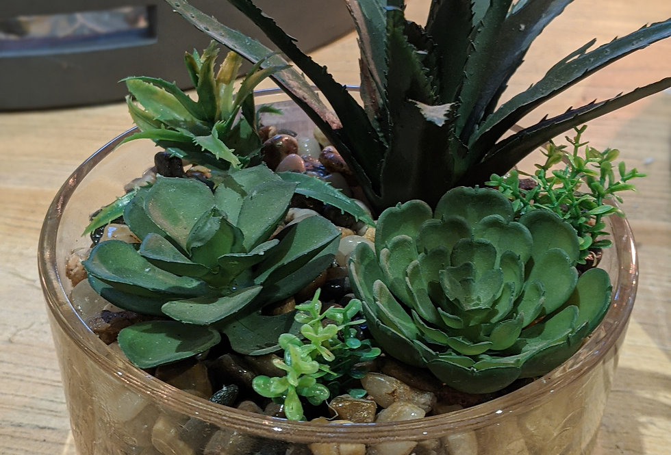 Faux succulent in Glass Bowl