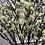 Thumbnail: Branch In Bloom Faux Stem