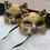 Thumbnail: Mask Cat With Ribbon