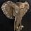 Thumbnail: Elephant Head