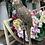 Thumbnail: Gold Parrot On Perch