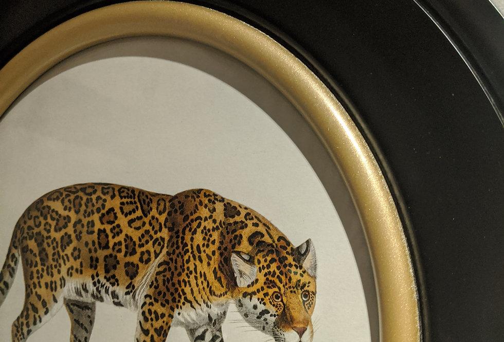 Jaguar Print in Round Frame