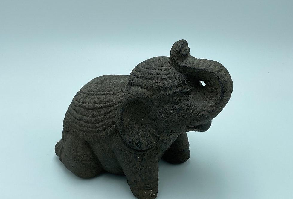 Elephant Turtle