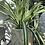 Thumbnail: Cream Round Plant Pot