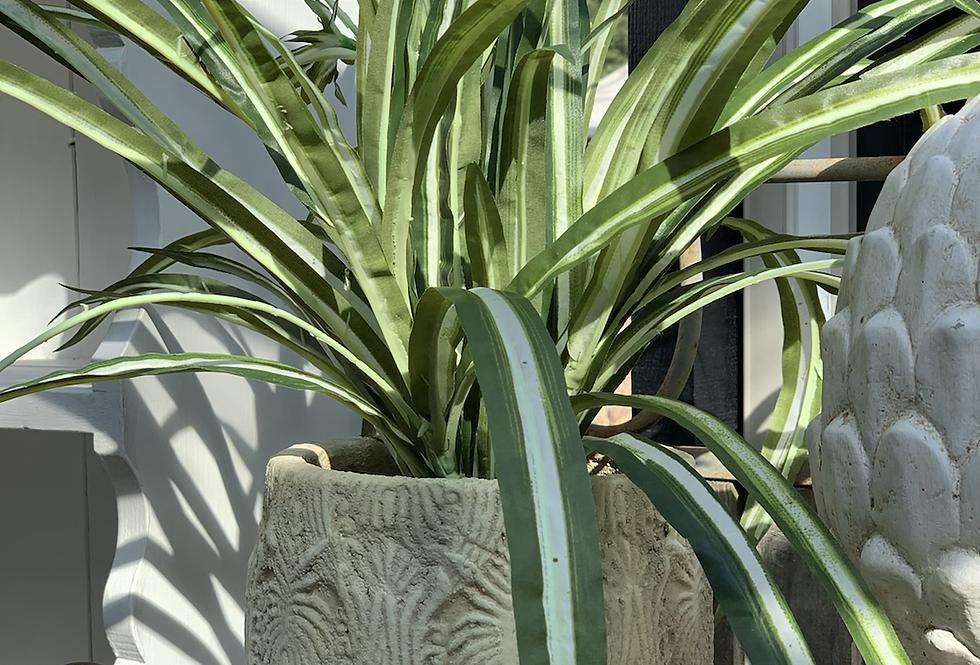Cream Round Plant Pot