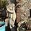 Thumbnail: Venus Statue