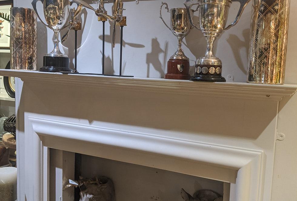 Large Trophy Cup