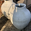 Thumbnail: Outdoor Rope Pot