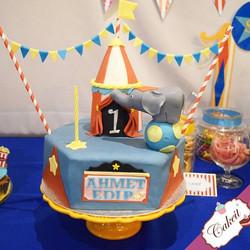 C I R C U S #themedparty #candybar #circ