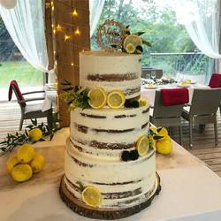 Lemon, blackberries and flowers on a sem