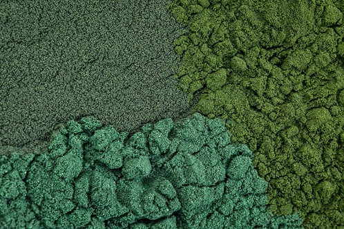 Green Spirulina Capsules  (2 week supply)