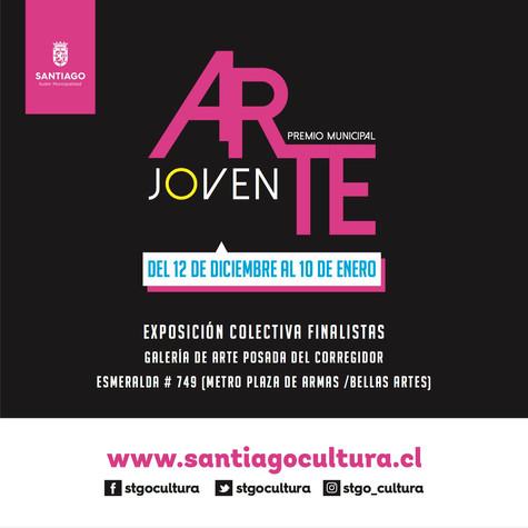 Primera Mención Honrosa en la categoría video del concurso Arte Joven de Santiago Cultura 2020.