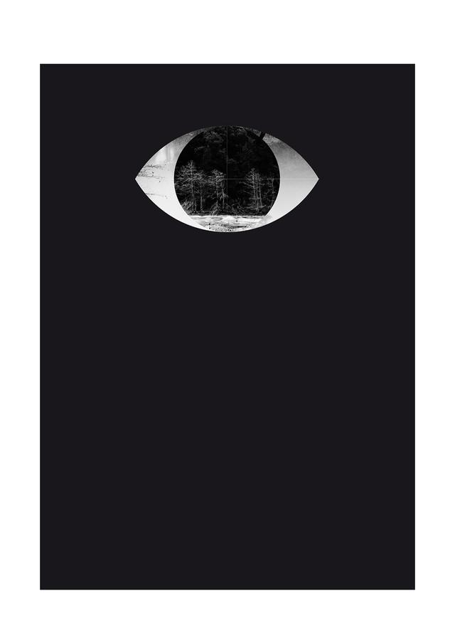 The_Eye_Series_by_Esteban_Amaro_RGB-01.j