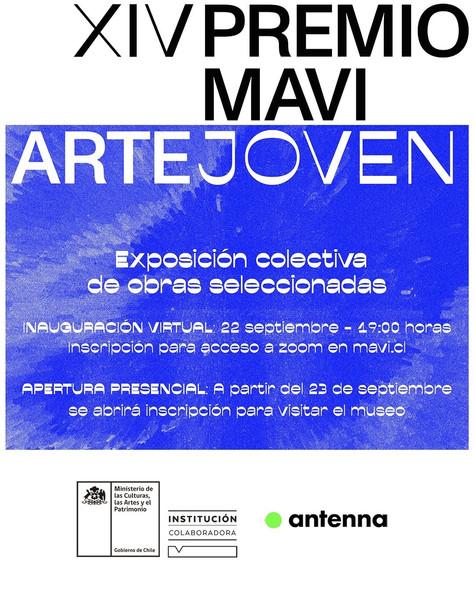 """""""Water Portals 055"""" En la exposición del Premio Arte Joven Museo de Artes Visuales MAVI 2020."""
