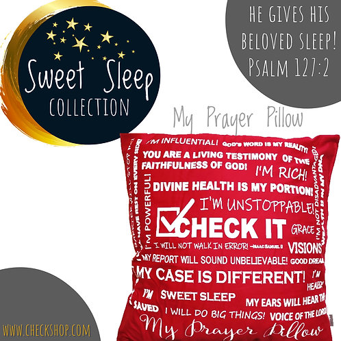 Check It Prayer Pillow - Case ONLY