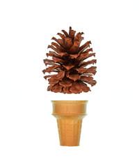 Cone Concept One