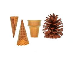 Cones \ˈkōn \
