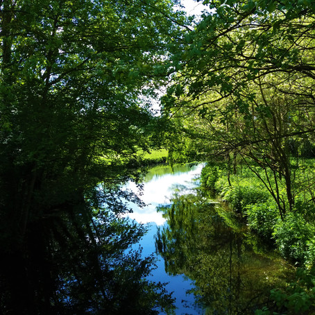 Natural Philosophy - The River