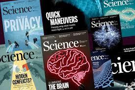 Redacción de un artículo científico: Resultados y discusión