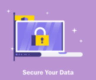 secure device.jpg