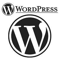Website desigining Engines wrdpress - Fi