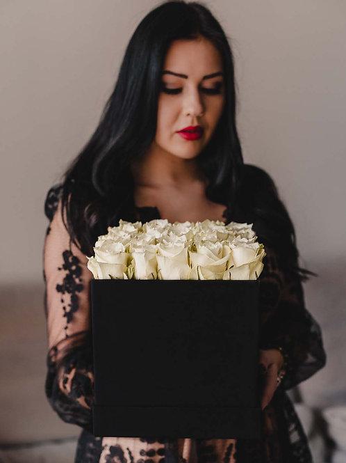 Box 11, 25 White Rose