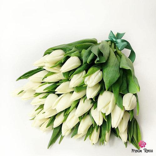 White Tulips | Tulipani Bianchi, Consegna fiori a domicilio a Milano